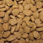 cibo secco per animali